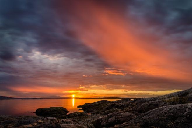 sunrise brushstroke
